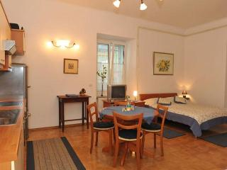 Nika Tour As - In the heart of Ljubljana - Slovenia vacation rentals
