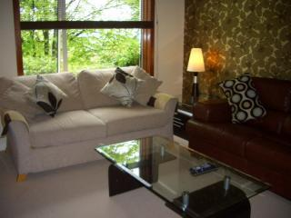 Double Sofabed and comfortable Leather Sofa - SHERBROOKE APARTMENT TWO Luxury Southside Apartment - Glasgow - rentals