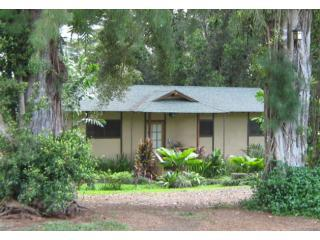 entrance between trees - Kauai Tea Garden Cottage - Kapaa - rentals