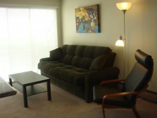 Twin Peaks, Luxury Apt, Parking, WiFi, babysitting - San Francisco vacation rentals