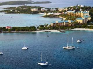 Ritz Carlton Club  Luxury Beach Villa - Saint Thomas vacation rentals