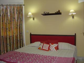 Carnation Room (2).JPG - Aashiyan Beautiful,homely Bed & Breakfast in Delhi - New Delhi - rentals