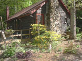 Creekstone Cabin - NC Mountain Cabin Sleeps 4 - Candler vacation rentals