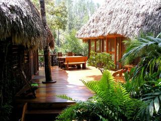 Luxurious, Secluded Riverfront Villa - Cayo vacation rentals