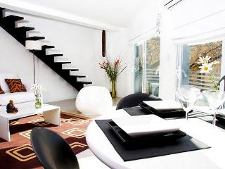 Ultra Lux Duplex with private terrace/Palermo Soho - Buenos Aires vacation rentals