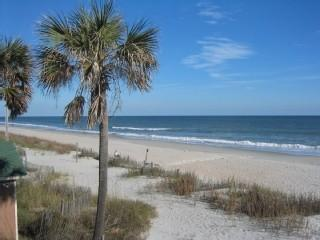 View of beach just steps away - 5 BR  Beach House in Oceanfront Family Resort - Myrtle Beach - rentals