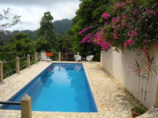Casa Toucan: Jungle Setting with Ocean View & Pool - Uvita vacation rentals