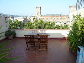Cute apartment, amazing TERRACE, in Las Ramblas - Barcelona vacation rentals