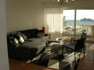 Nordic Suite - Cannes vacation rentals