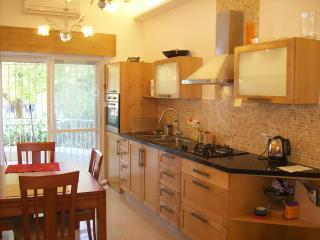 Gan Rechavya Green Fields Kosher Luxury Apartment - Jerusalem vacation rentals