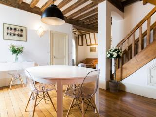 Two self catering apartments in the heart of Dijon - Dijon vacation rentals