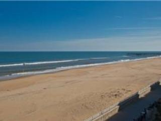 A-207 Endless Summer - Virginia Beach vacation rentals