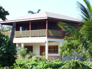 The Flamboyant Tree Apartments - Placencia vacation rentals
