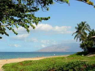 Kamaole II Beach just 100 yards walk - Kihei Kai Nani #218 Awesome Condo-Ocean View + Mt - Kihei - rentals