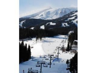 Ski In; Ski Out; Gorgeous; Pool, Hot Tubs; In Town - Breckenridge vacation rentals