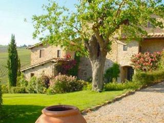 Panzano vista 19 - Cortona vacation rentals