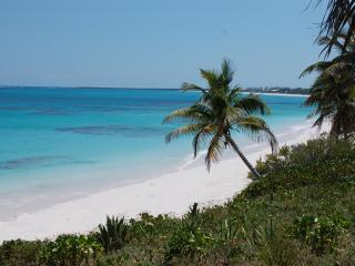 Bahamas Pura Vida, Beachfront Tropical Paradise - Double Bay vacation rentals