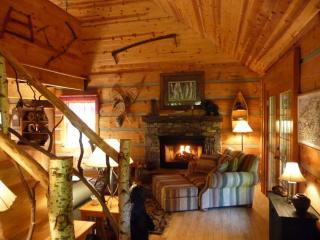 Winding Falls Cabin, A Romantic Mountain Paradise - Hot Springs vacation rentals