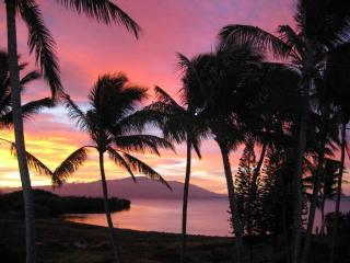 Sunrise From your Lanai - Aug. Avail:1 Bedrm Top Floor Ocean-Side Condo Wi-Fi - Kaunakakai - rentals