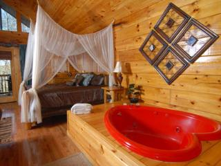 Naughty By Nature a one bedroom Pigeon Forge cabin. - Pigeon Forge vacation rentals