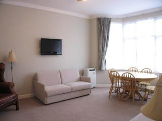 Luxury A/C flat,easy access to city centre,wifi. - London vacation rentals