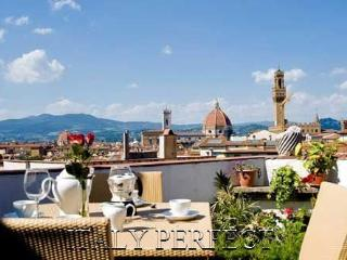 Fabulous Views, 2 Terraces!  You'll love Amore - Rome vacation rentals