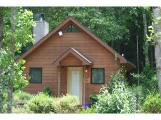 Larrys Mountain Lodge on Cherry Blossom Lane - Larry's Lodge, Asheville Cabins of Willow Winds - Asheville - rentals