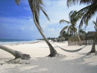 Beach - Playa del Carmen, Mexico - BEAUTIFUL condo in BEST neighborhood by Beach!!! - Playa del Carmen - rentals