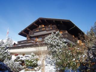 Superbly located Ski Chalet with wonderful views. - Jungfrau Region vacation rentals