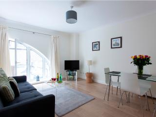 Stylish 2 Bed Monument Street Apartments - Paris vacation rentals