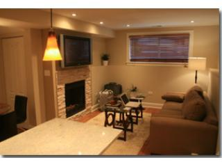 lv16-2 - 2 bedroom 2 bath Condo - Chicago - rentals