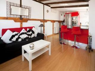 Madrid San Onofre Terrace Apartment - Madrid vacation rentals