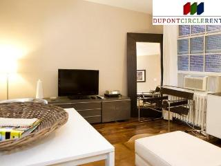 Modern Luxury One Bedroom Apartment in Best Location - 2 blocks to metro - Washington DC vacation rentals