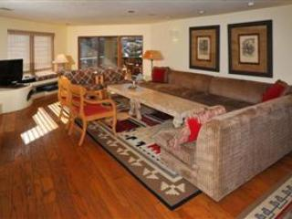 Village Inn Plaza - Vail vacation rentals
