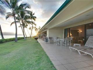Amazing 3 Bedroom, 2 Bathroom House in Lahaina (Puamana 19-4 (3/2) Superior OF) - Lahaina vacation rentals