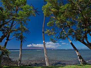 Beautiful House with 1 Bedroom, 2 Bathroom in Lahaina (Puamana 38-2 (1/2) Superior OF) - Lahaina vacation rentals