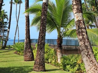 Comfortable House with 3 BR & 3 BA in Lahaina (Puamana 48-2 (3/3) Standard GV) - Lahaina vacation rentals