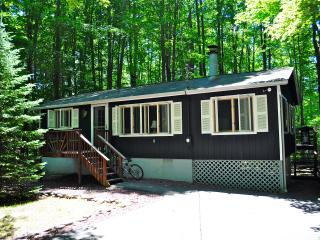 LEAF PEEPERS – BOOK NOW! Clean, Cozy Pocono Lake Cottage – Fireplace, Firepit, Free Wifi! - Pocono Lake vacation rentals