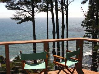 Half of the ocean view.  Add the two view together for the total view. - Stunning Expansive Whitewater View - Gualala - rentals