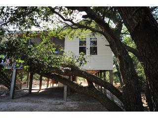 DSC 0689 - OBX - NC - Secluded Cottage - 4WD Area - Corolla - rentals