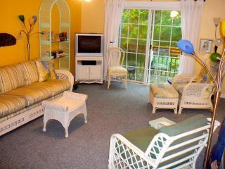 FULLY BOOKED UNTIL 1 APRIL 2015 - Fernandina Beach vacation rentals