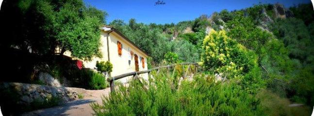 34549 438587268435 589103435 5968897 3798948 n - Casina al Monte holiday home 8km Pisa 13km Lucca - Tuscany - rentals