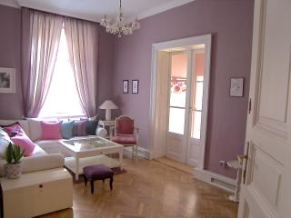 Elegance, style, space, Apt off Wenceslas square, 80% occupancy 2012 BOOK NOW! - Czech Republic vacation rentals