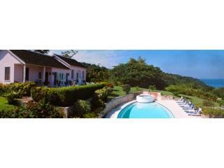 5 Bedroom Luxury and Affordable Villa on 9 acres - Montego Bay vacation rentals