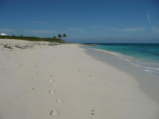 Oceanfront, Views, Secluded Location, Dock, Beach - Green Turtle Cay vacation rentals