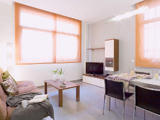 Barcelona Sants 2 BR apt & parking - Fira Place 10 - Catalonia vacation rentals