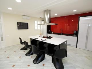 Stunning kitchen - 5BR Paseo de Gràcia Red Carpet - Barcelona vacation rentals