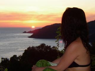 Sueño del Mar. Dream of the Sea.  Artful. View. - Zihuatanejo vacation rentals