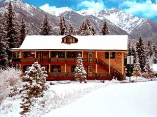 The Trout House - Durango vacation rentals