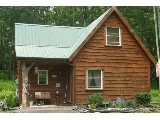 Rickett's Glen Cabin - Benton vacation rentals